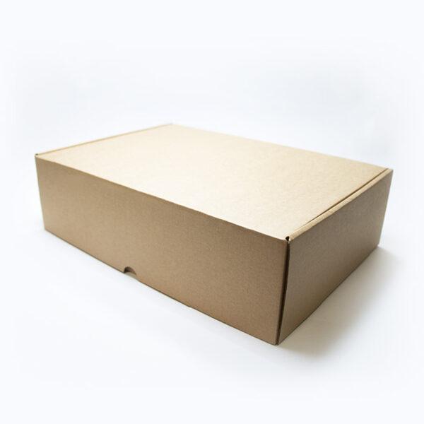 Kartona kastīte nr3